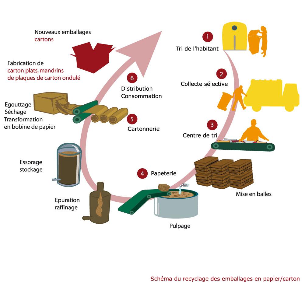 Cycle de vie du plastique. Suivre le lien 'Cycle de vie du carton'
